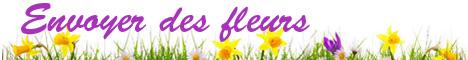 Livraison de fleurs - Envoyer des fleurs
